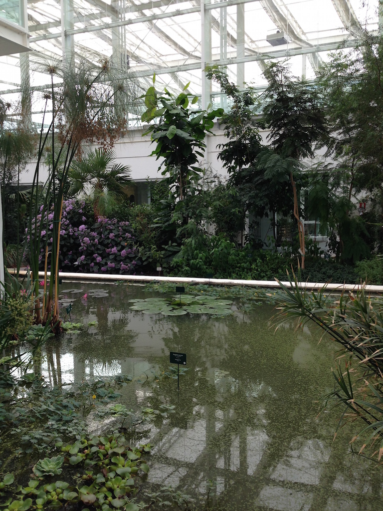 Giardino della Biodiversità Padova